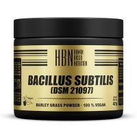 Hbn bacillus subtilis (dsm 21097) - 60 capsules